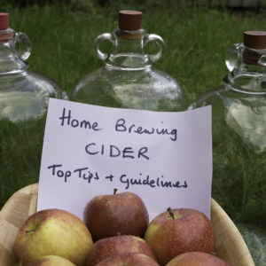 Homebrewing Cider – Top Tips and Guidelines