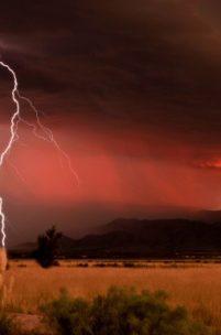5 Dangers to an Arizona Roof