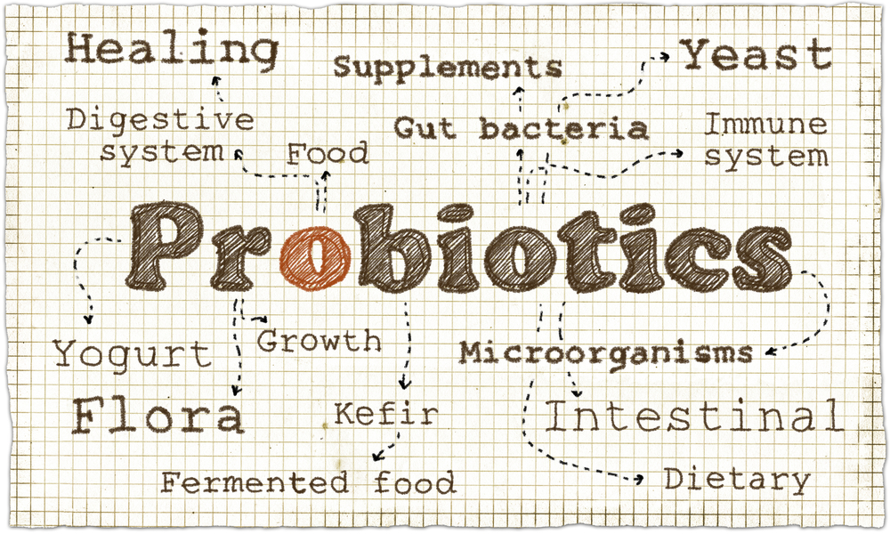 Probiotics Featured Image