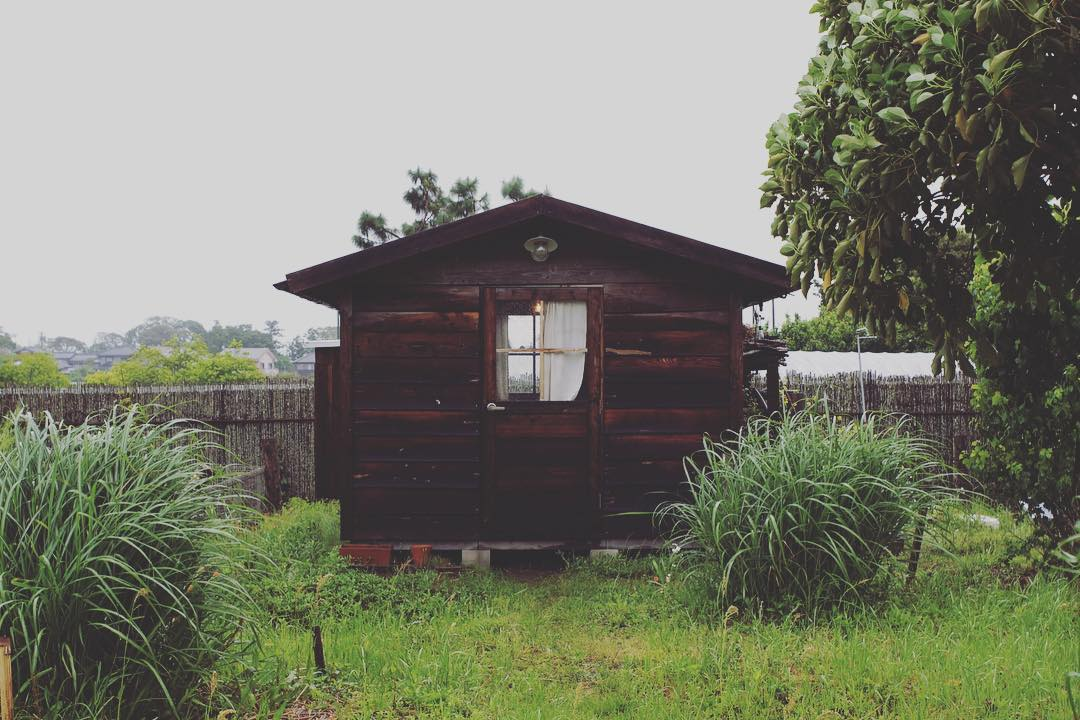 7 Reasons You Need a Storage Shed (and How to Get Started)