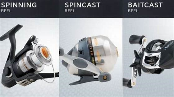 Difference Between Spinning Reel, Spincast Reel and Baitcast Reel