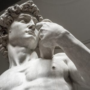 Biblical David (Michelangelo) 1501-1504 marble statue