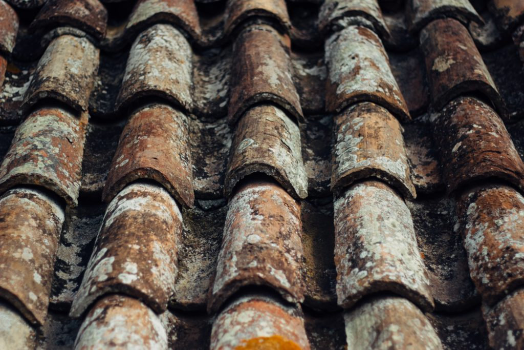 Brown roof shingles