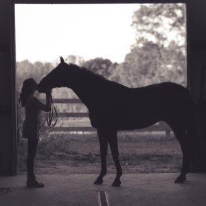 Woman kissing a horse