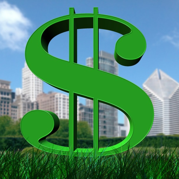 Dollar sign on grass