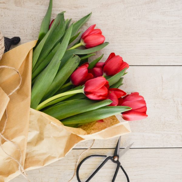Red tulips wrapped in paper