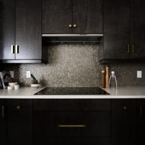 Dark, empty kitchen stove with ceramic stovetop and black wooden cabinets
