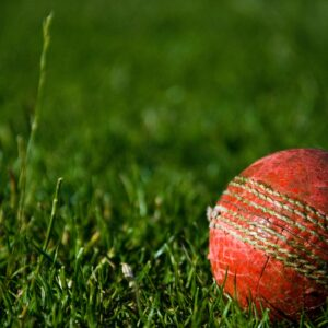 Red cricket ball on grass