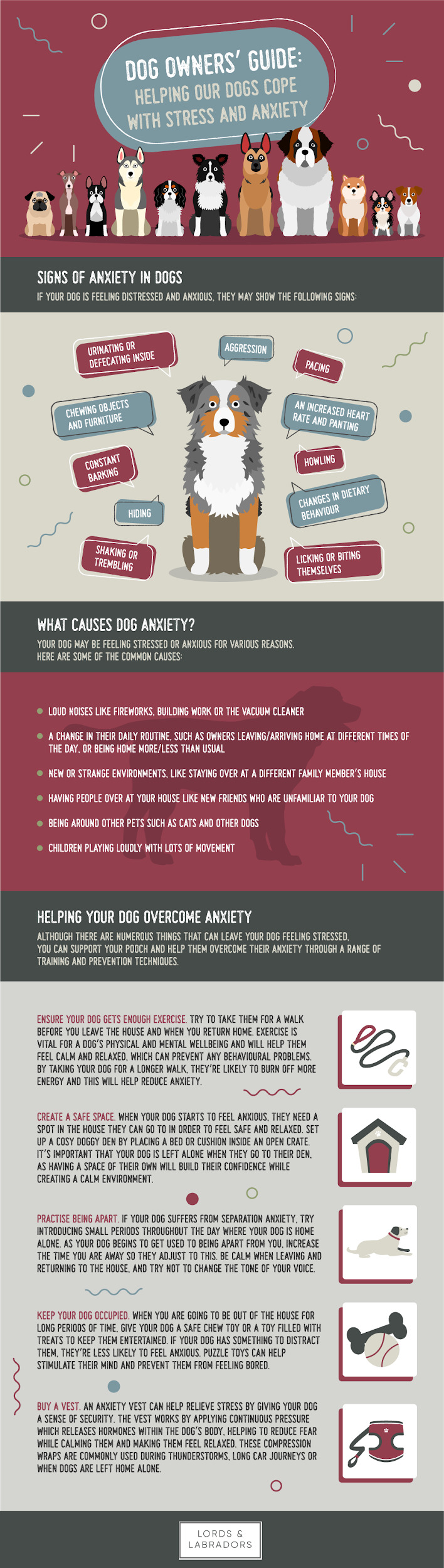 Dog Owners' Guide - Helping Our Dogs Cope with Stress and Anxiety Infographic