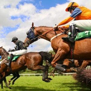 Jumping horses