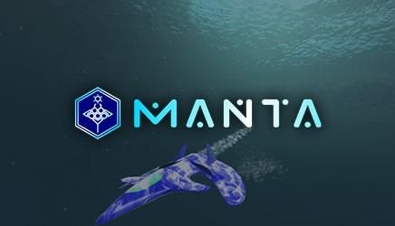 Manta on Steam