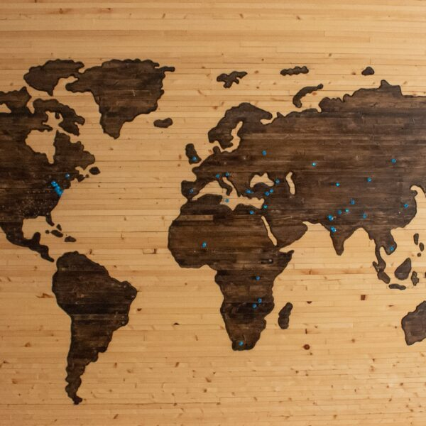 Wooden map of the world with pins indicating where someone has travelled to